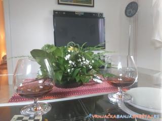 Apartman NV - Vrnjačka Banja